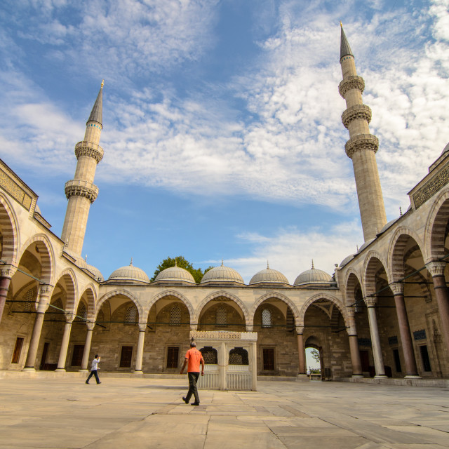 """""""Mosque Courtyard."""" stock image"""