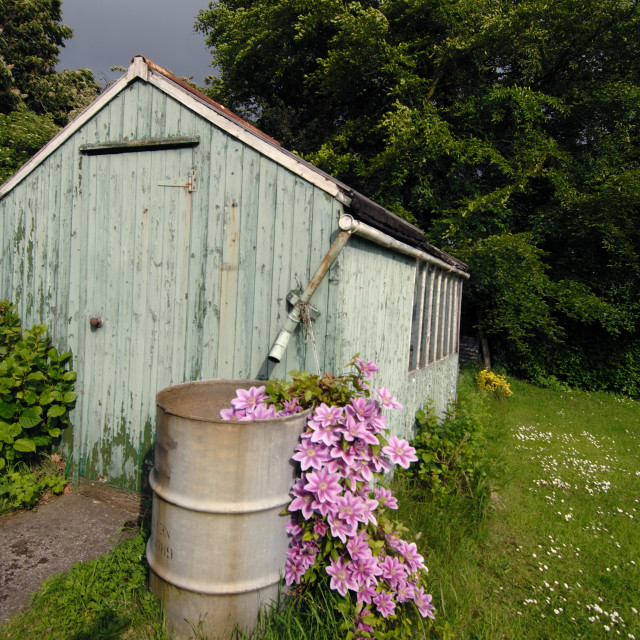 """Old garden shed"" stock image"