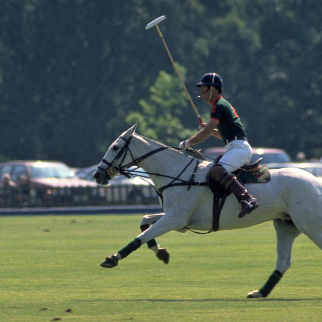 """Prince Charles Playing Polo at Windsor"" stock image"