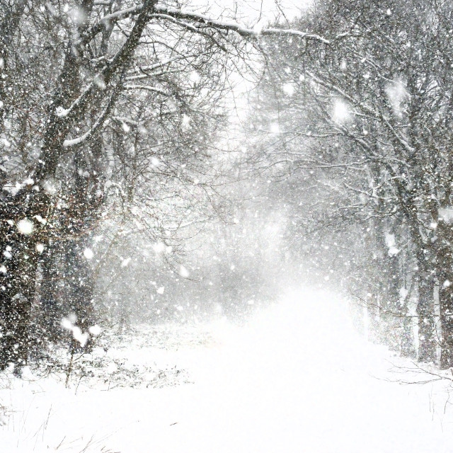 """Whiteout winter snow in the north of England"" stock image"