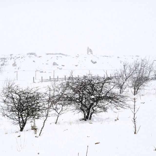 """Whiteout winter - Consett, County Durham"" stock image"