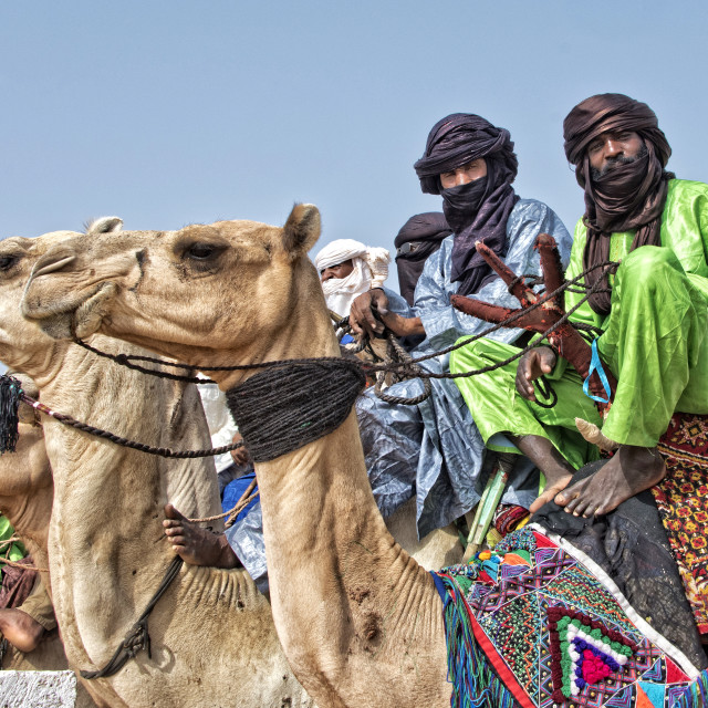 """Touareg men on camels - Niger"" stock image"