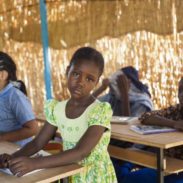 """""""African schoolgirl in classroom; Niger, West Africa"""" stock image"""