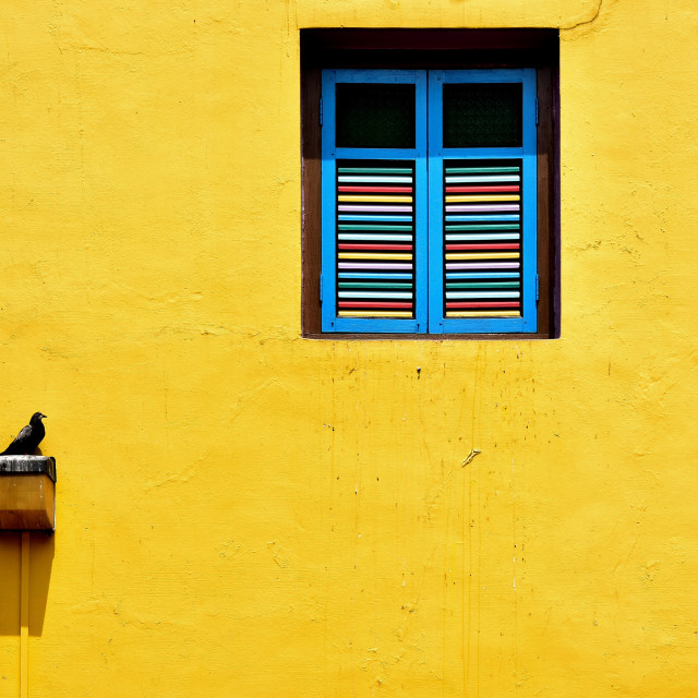 """Antique window on yellow wall"" stock image"