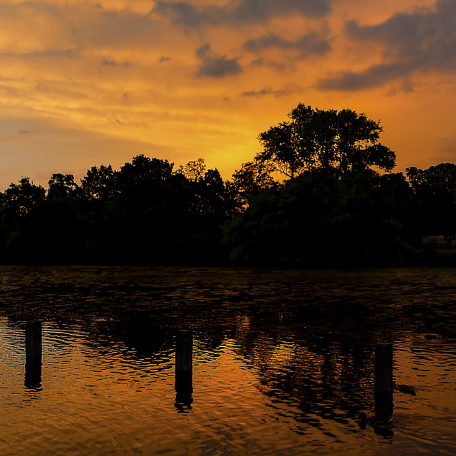 """Hyde Park Sunset - Orange II"" stock image"