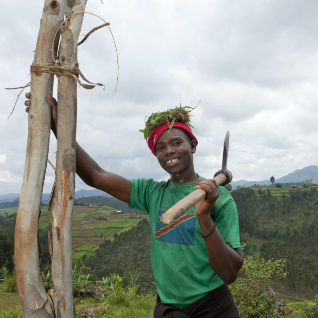 """Lumberjack in gisakura area - rwanda"" stock image"