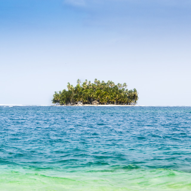 """A small Caribbean island with palm trees"" stock image"