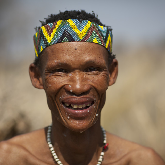 """San Man With The Face Spattered With The Pulp Of The Water Tuber, Namibia"" stock image"