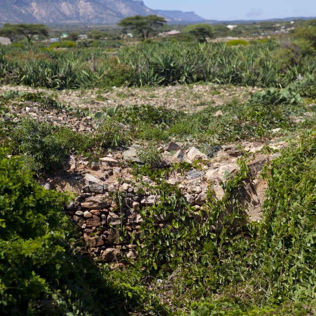 """""""Ruins In the Nature In Sheikh Hussein, El Sheikh, Somaliland"""" stock image"""