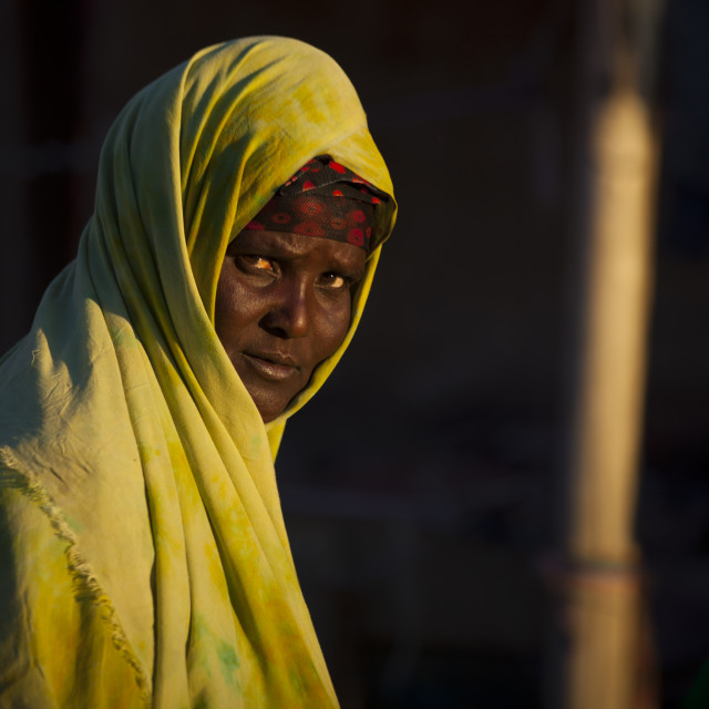 """""""Portrait Of A Mature Woman In Green, Boorama, Somaliland"""" stock image"""
