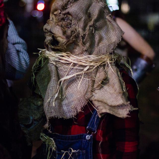 """Scarecrow"" stock image"
