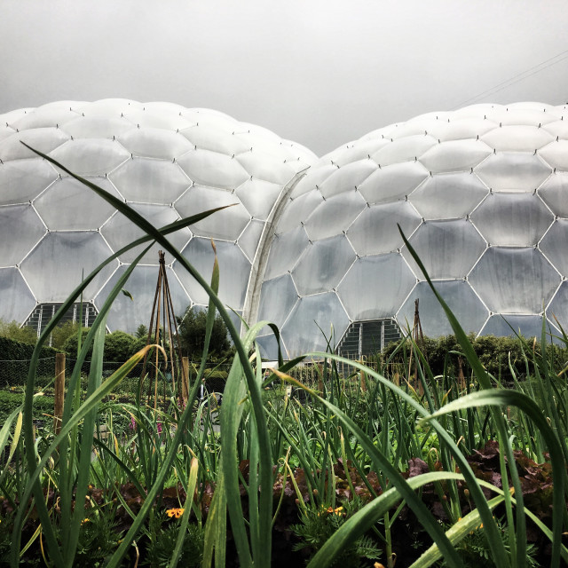 """The Eden project"" stock image"