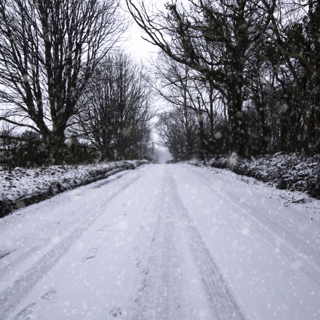 """A road to winter"" stock image"