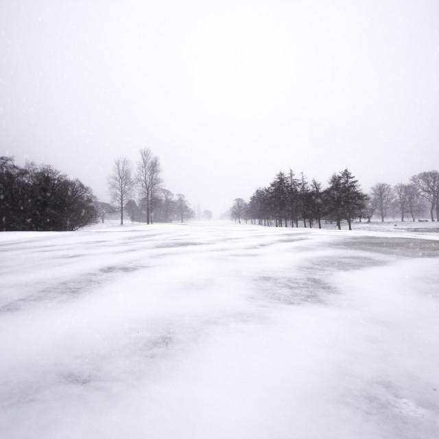 """""""Frozen fields of winter"""" stock image"""