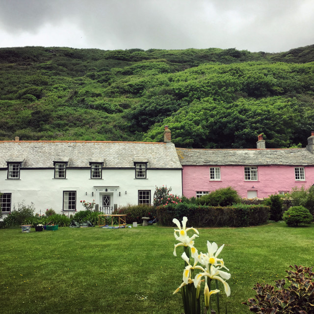 """""""Cottages in Boscastle."""" stock image"""