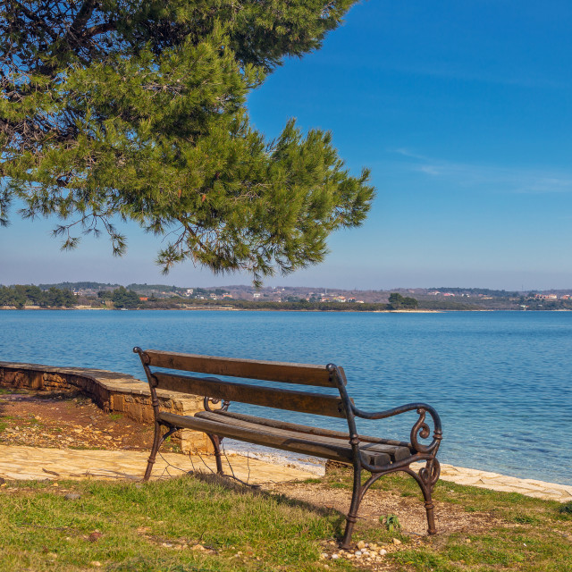 """Empty wooden bench"" stock image"