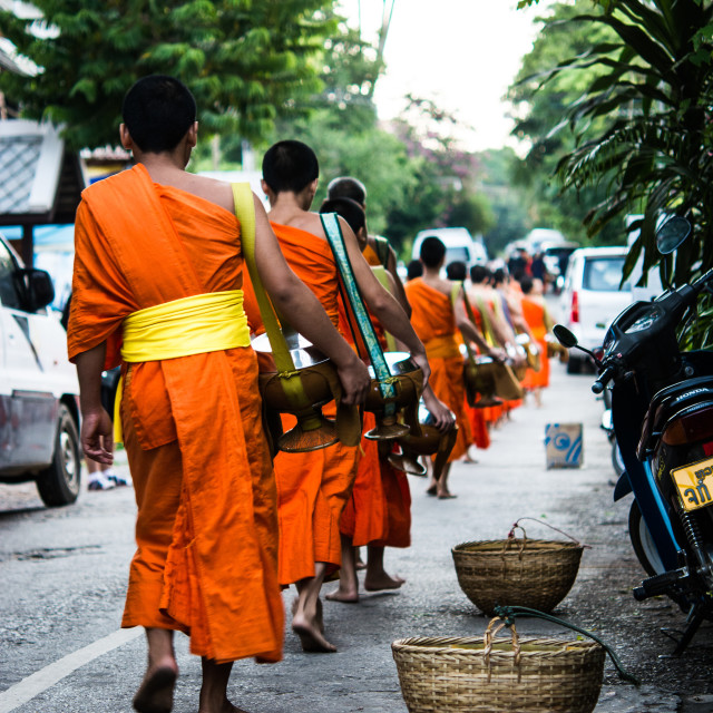 """Monks collecting Alms, Luang Prabang, Laos"" stock image"