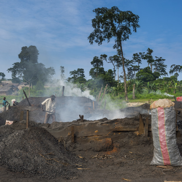 """""""Coal production out of wood, Libongo, deep in the jungle of Cameroon"""" stock image"""