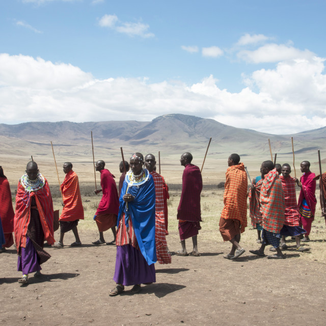 """""""Massai tribesmen performing a traditional dance in Ngorongoro Conservation..."""" stock image"""
