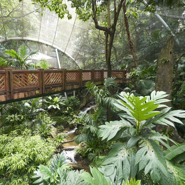 """""""Hong Kong Park Aviary in Central, Hong Kong Island, Hong Kong"""" stock image"""