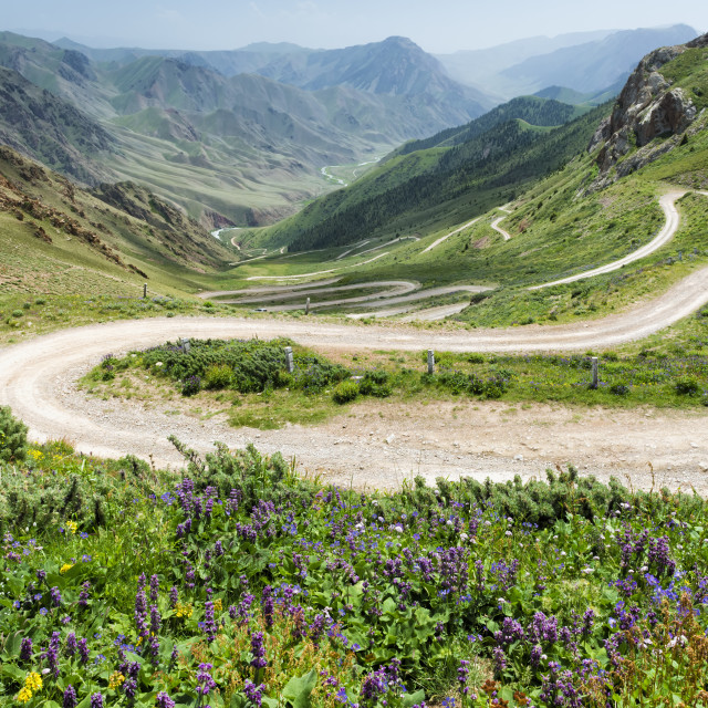 """Road to Song Kol Lake, Parrot pass, Naryn province, Kyrgyzstan, Central Asia"" stock image"