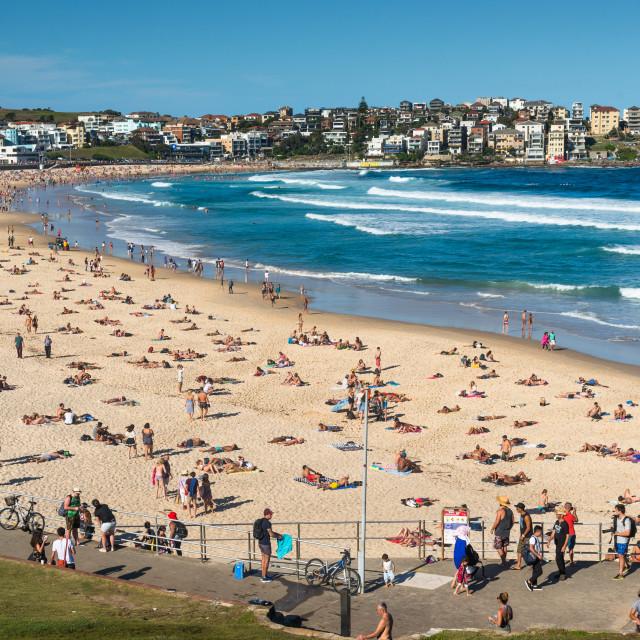 """Bondi Beach, Sydney, New South Wales, Australia."" stock image"