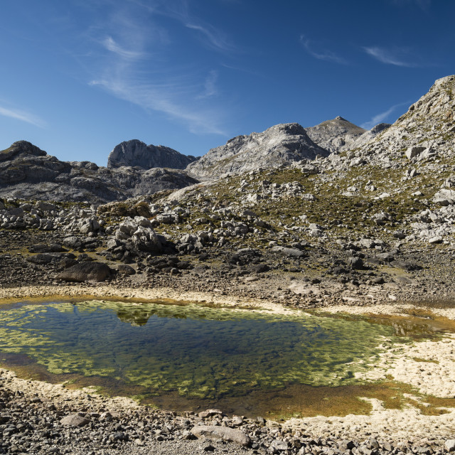 """""""Picos de Europa National Park, Cantabria, Spain."""" stock image"""