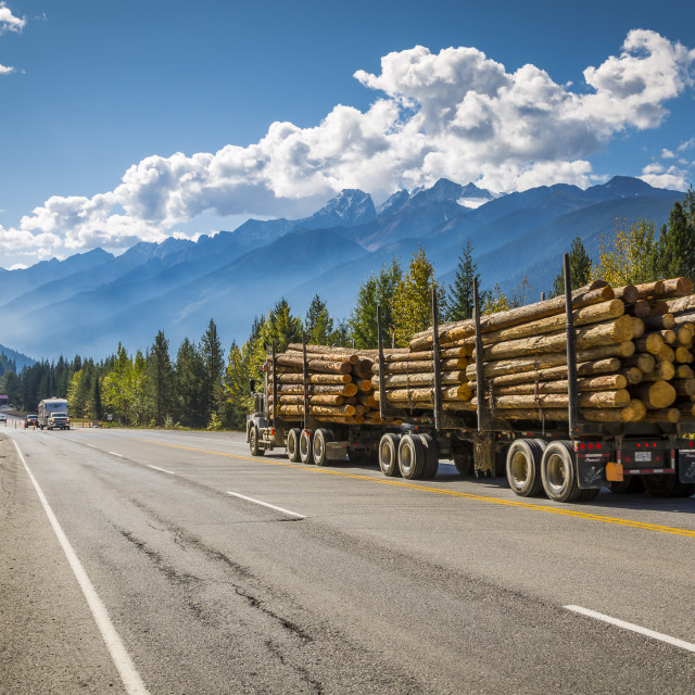 """Timber laiden Freightliner travelling on the Trans Canada Highway in Glacier..."" stock image"