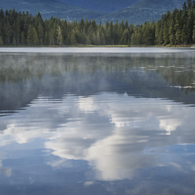 """Mist on Lost Lake, Ski Hill and surrounding forest, Whistler, British..."" stock image"