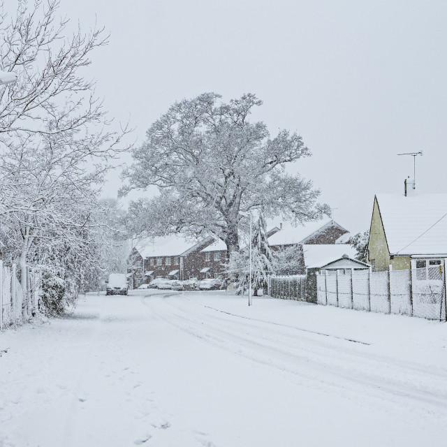 """Snowy road"" stock image"