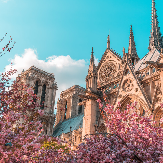 """Spring in Paris"" stock image"
