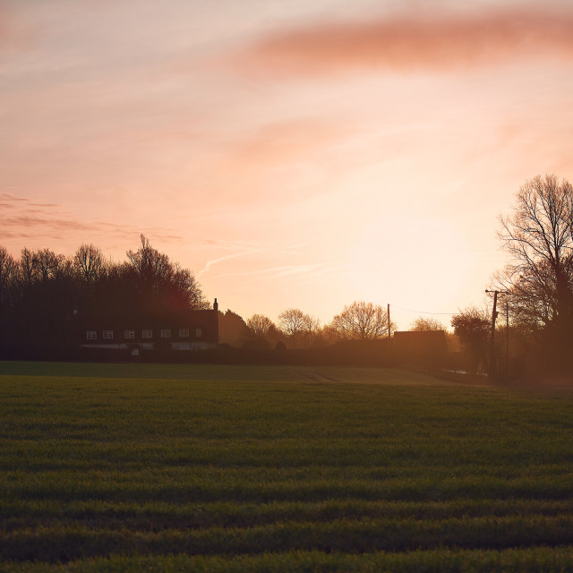 """""""Sunset over a field and house"""" stock image"""