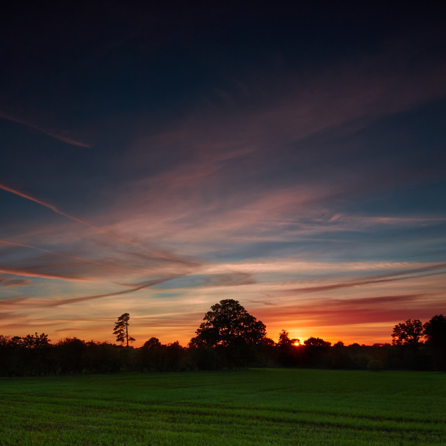 """""""Sunset over a field"""" stock image"""