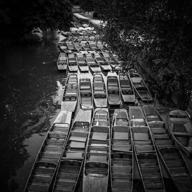 """Lots of punts on the river"" stock image"