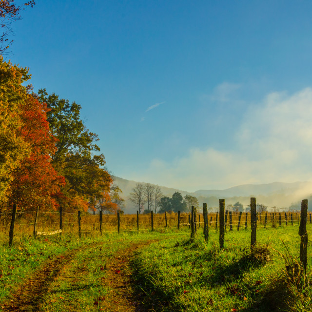 """Foggy Fall Morning Great Smoky Mountains"" stock image"