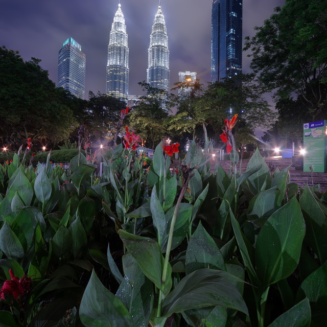 """""""KUALA LUMPUR, MALAYSIA -7 MARCH 2017- Day view of the KLCC Park, a public garden close to Suria KLCC shopping centre and the Petronas Twin Towers, located in Kuala Lumpur, Malaysia."""" stock image"""