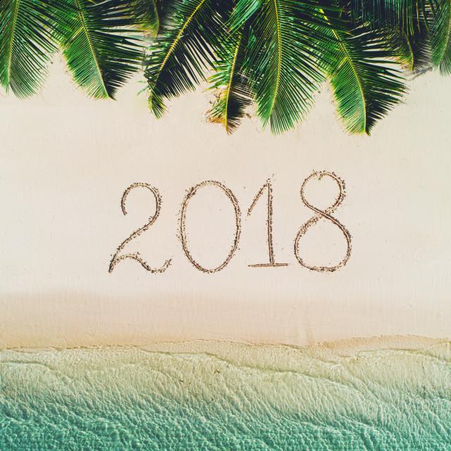 """Summer holiday on tropical island. 2018 write on beach sand. Pal"" stock image"