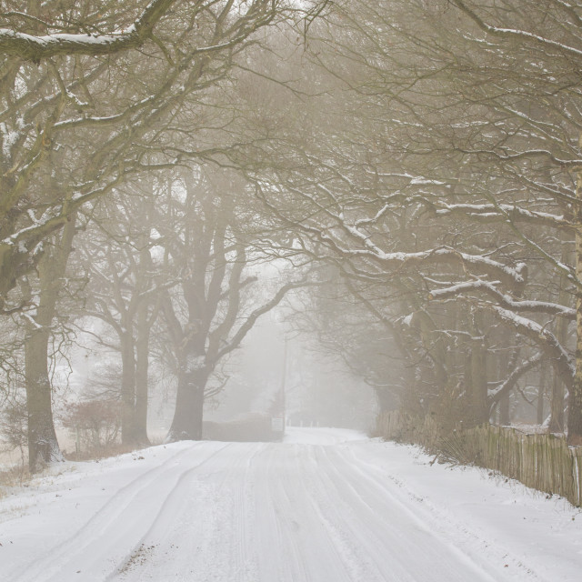 """""""Snowy country road"""" stock image"""
