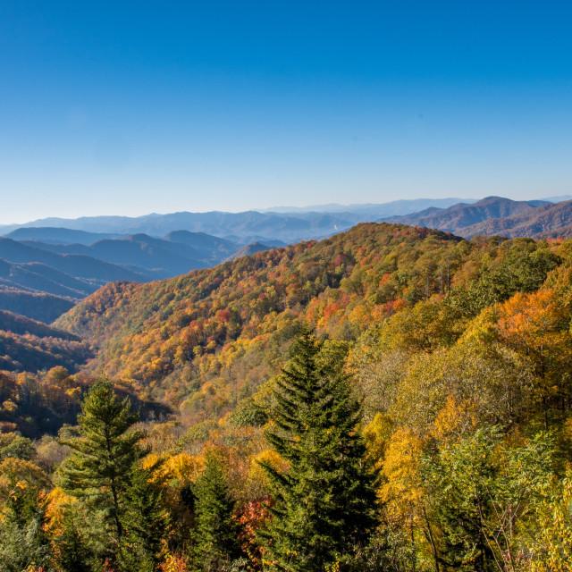 """Mountain Vista, Great Smoky Mountains"" stock image"