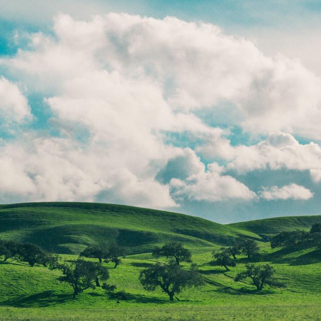"""""""San Simeon Hills"""" stock image"""