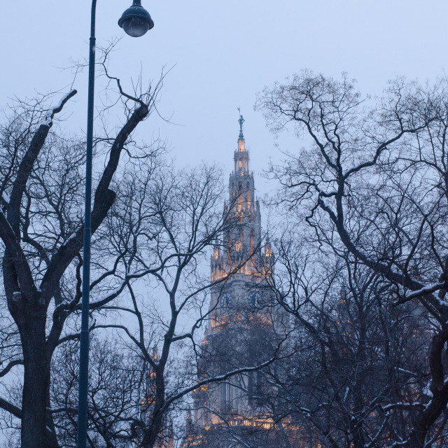 """""""View from Rathausplatz in Vienna on a winter evening"""" stock image"""