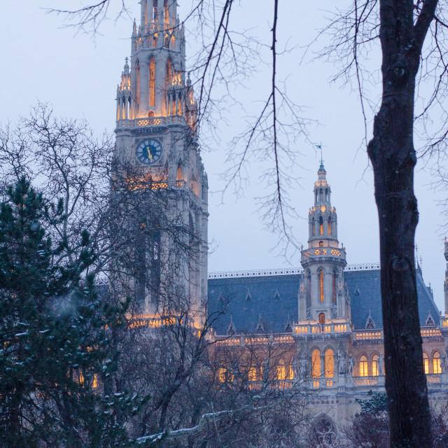 """""""Historic winter evening lights of Vienna"""" stock image"""