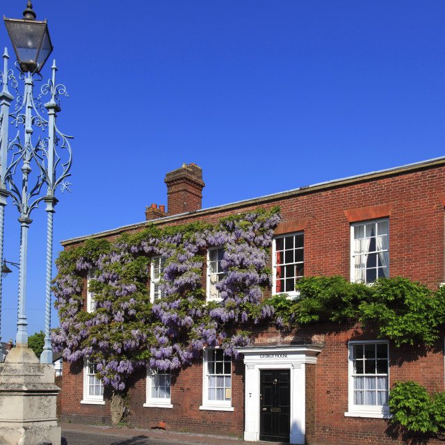 """""""Summer, George house, Petworth town, West Sussex County, England, UK"""" stock image"""