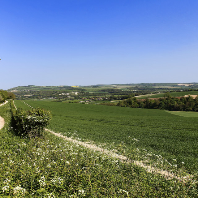 """""""Summer view over the South Downs National Park, looking towards Amberley..."""" stock image"""