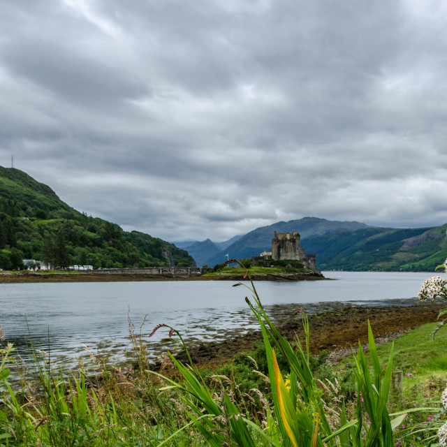 """""""Eilean Donan Castle, Flowers Foreground"""" stock image"""