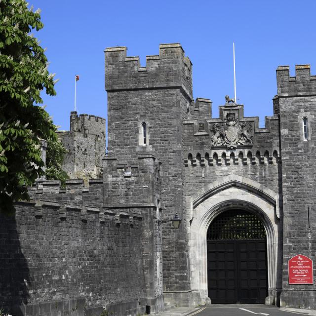 """Summer view of Arundel castle; Arundel town; Sussex; England; UK"" stock image"