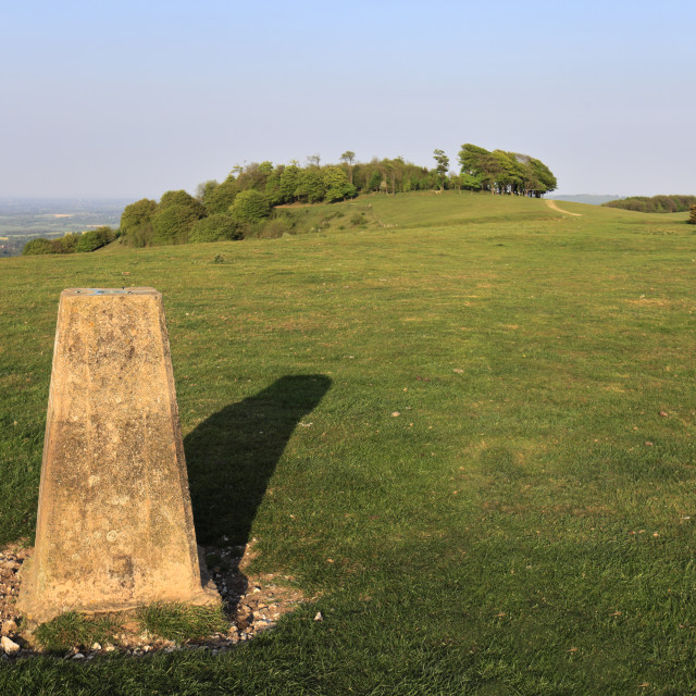 """""""Ordinance Survey Trig Point, Chanctonbury Ring, South Downs National Park,..."""" stock image"""