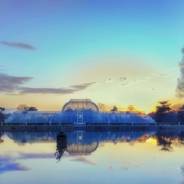 """Sunset Over Palm House"" stock image"