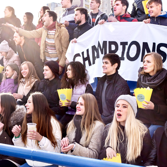 """""""Cheering fans in stadium holding champion banner."""" stock image"""