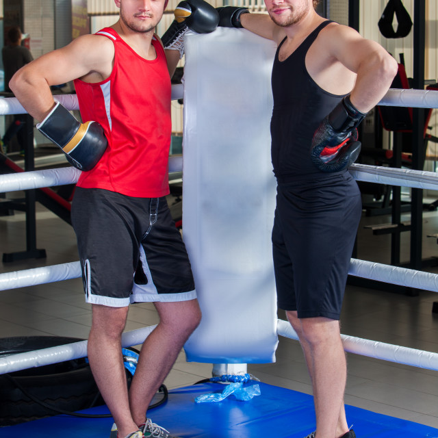 """""""Boxing ring with two men boxer. Man engage martial arts."""" stock image"""